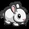 White Daisy Bunny-icon