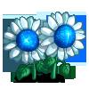White Dwarf Sunflower-icon