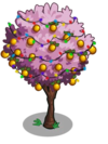 Golden Plum Tree6-icon