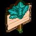 Aquarius Arugala Mastery Sign-icon