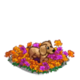 Puppy in Flowers-icon