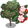 Wild Cherry Tree-icon