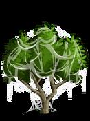 Apricot3-icon