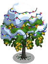 Indian Laurel Tree10-icon
