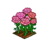 Perfect Pink Roses-icon