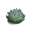 Sagebrush-icon