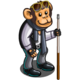 Pool Monkey-icon