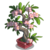 Adenium Bonsai Tree-icon