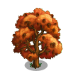 Black Oak Tree-icon