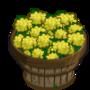 Mustard Bushel-icon