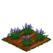 Spring Squill 66