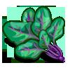 Violet Vein Spinach-icon