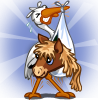 Adopt Dartmoor Pony Foal-icon.png