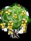 Starfruit4-icon