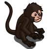 Spider Monkey-icon