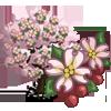 Pink Dogwood Tree-icon