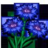 Cornflower-icon