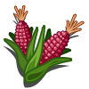 Sweet Corn (Sweet Seeds for Haiti)-icon