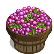 Lillipilli Bushel-icon