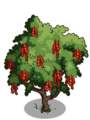 Amherstia Tree2-icon.png