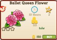 Ballet Queen Market Info