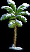 Peach Palm Tree7-icon