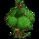 St. Patrick's Tree House 2-icon