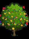 Asian Pear Tree6-icon
