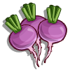 Turnip-icon
