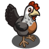 Dorking Chicken-icon