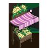 Cauliflower Stall-icon
