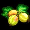 Gooseberry-icon