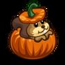 Squirrel Pumpkin-icon.png