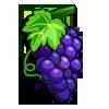 Shiraz Grape-icon
