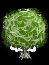 Grapefruit3-icon