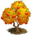 Blood Orange Tree.png