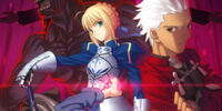 Fate/Stay Night (Anime)