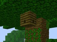 Jungle hive