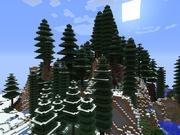 Snowy Rainforest