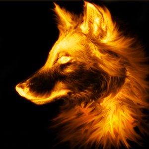 File:Wolf by cycyuts.jpg