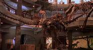Jurassic-park-movie-screencaps.com-13824