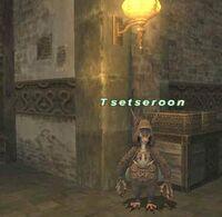Tsetseroon