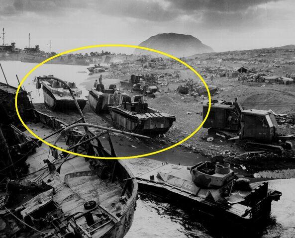 File:LVTs on Iwo Jima - kopie.jpg