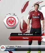 Frankfurt home