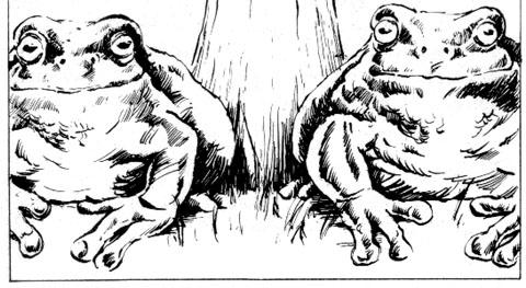 File:Giant Frogs.jpg