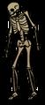 FeebleSkeletonD.png