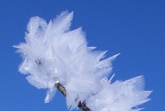File:Feather ice 1, Alta plateau, Norway.jpg