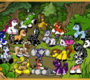Filly Forest (location)