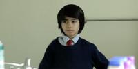 Neel Sethi