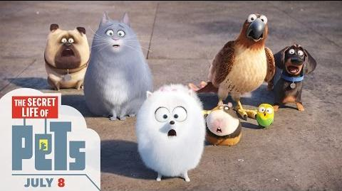 The Secret Life of Pets - Trailer 2 (HD) - Illumination
